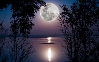 Wat is jouw moon speech?